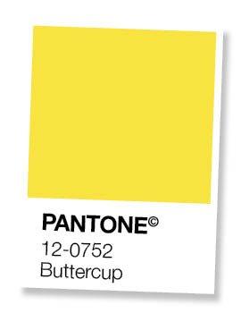 wat kleur psychologie voor je merk betekent