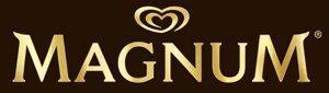 magnum-archetype-lover-logo